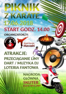 Piknik z Karate plakat (3)